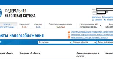 Личный кабинет пользователя на фиасмо.налог.ру