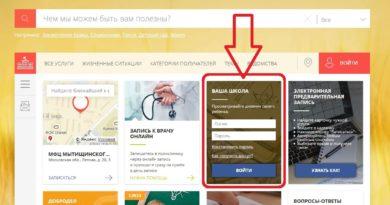 Школьный портал и электронный дневник Мосрег: вопросы и ответы